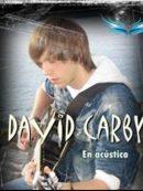 Imagen de la noticia David Carby en concierto