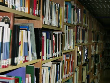 Imagen de la noticia Más libros y audiovisuales en el Día de la Biblioteca