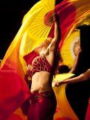 Imagen de la noticia Danza oriental. Festival fin de curso