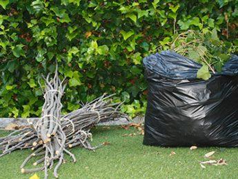 Imagen de la noticia Los restos vegetales se tratarán en una planta de compostaje