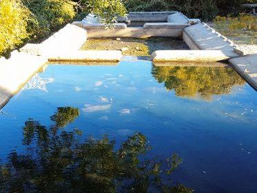 Imagen de la noticia Limpieza del antiguo lavadero de la Dehesa Municipal