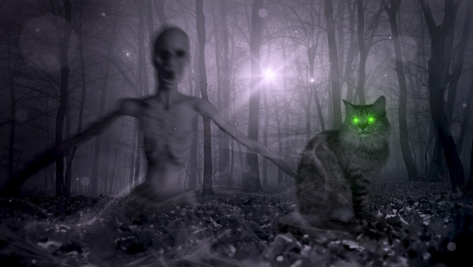 Imagen de la noticia Apocalipsis Zombie en el Centro de Juventud
