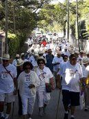 Imagen de la noticia Marcha de Las Rocas