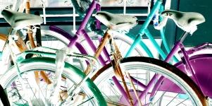 Imagen de la noticia Bicicletas a la calle
