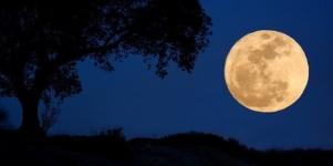 Imagen de la noticia Viernes de Luna Llena o Luna Azul