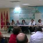 Imagen de la noticia Primer pleno participativo del nuevo gobierno de Alpedrete
