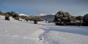 Imagen de la noticia Aprobado el Plan de Inclemencias Invernales