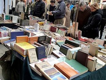 Imagen de la noticia Feria del Libro de Alpedrete 2016