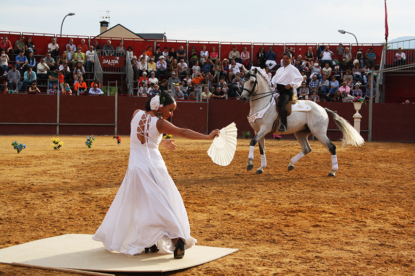 Imagen de la noticia Humanos y caballos al mismo son