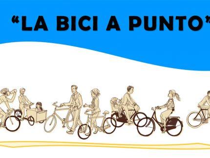 Imagen de la noticia La bici a punto