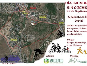 Imagen de la noticia Celebra en Bici el Día Mundial sin Coches