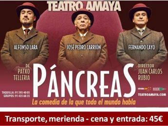 Imagen de la noticia Salida Cultural: Páncreas, la comedia de la que todo el mundo habla