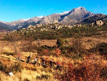 Imagen de la noticia 256 ciclistas han participado en Caminos de la Sierra