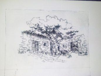 Imagen de la noticia Exposición de grabados