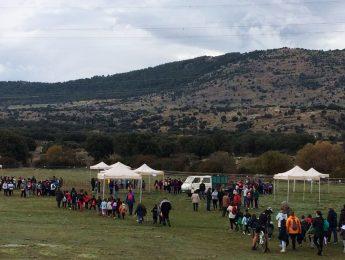 Imagen de la noticia 300 escolares de Alpedrete participan en el cross ADS