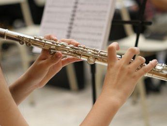 Imagen de la noticia Festival de orquestas
