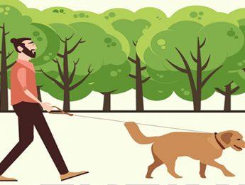 Imagen de la noticia Sábado 9, camina por el alzheimer