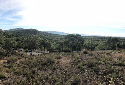 Imagen de la noticia Marcha a pie: Alpedrete-Los Molinos