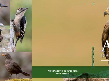 Imagen de la noticia El Día de las Aves descubre el centenar de especies que existen en Alpedrete