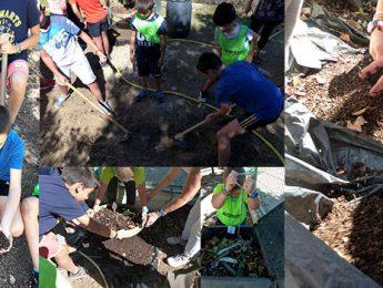 Imagen de la noticia El Peralejo y Clara Campoamor obtienen 25 kilos de compost escolar