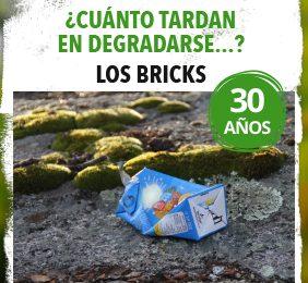 Imagen de la noticia Los bricks tardan 30 años en degradarse