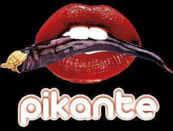 Imagen de la noticia Orquesta Pikante y DJ