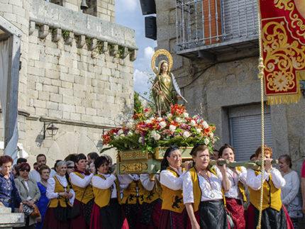 Imagen de la noticia Convocatoria Consejo Sectorial de Festejos fiestas de Santa Quiteria