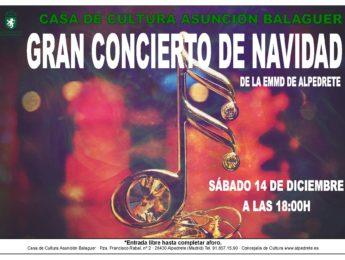 Imagen de la noticia Gran concierto de Navidad