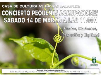 Imagen de la noticia Cancelado el Concierto Pequeñas Agrupaciones