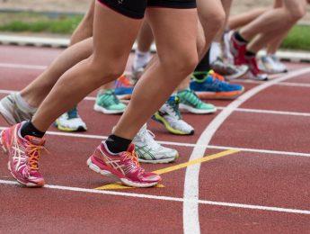 Imagen de la noticia Las Escuelas Deportivas Municipales y la Escuela de Natación abren su período de reserva de plazas