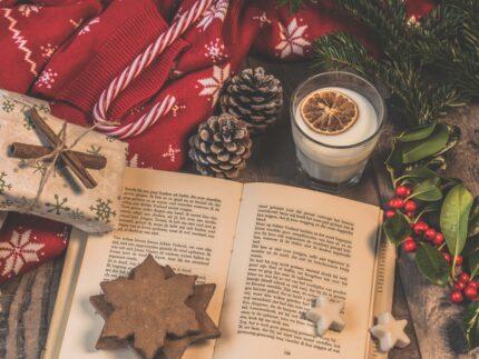 Imagen de la noticia Boletín de novedades de diciembre de la Biblioteca Municipal